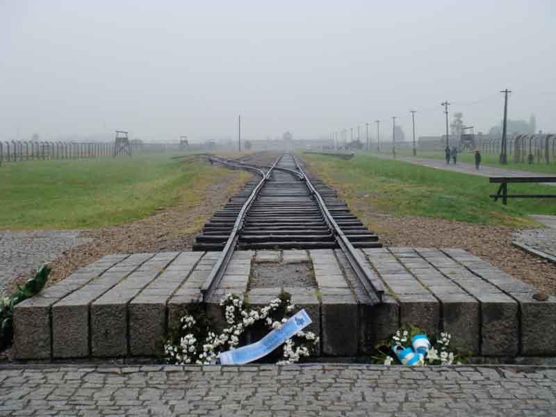 blue-tracksWEB