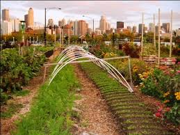 City Farms