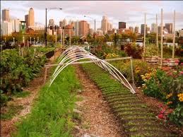City Farms