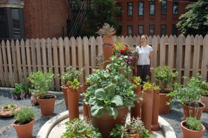 The garden now has even more containers, kindly donated by Jayson's Home and Garden, in Lincoln Park.  The newest containers are visible to the far left.