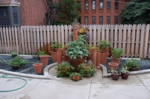 5710 garden - the Smith & Hawken containers are the graceful outer ring.